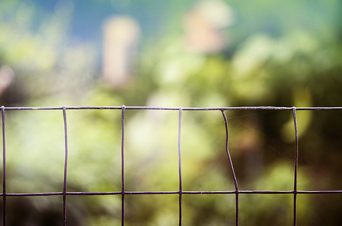 a wire fence