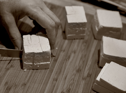 black and white photo of a hand and 5 square blocks of tofu