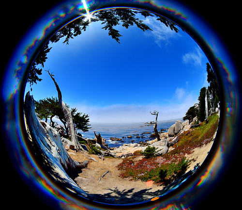 a crystal ball, in which there is a view of a coastal scene, including a vibrantly blue sky