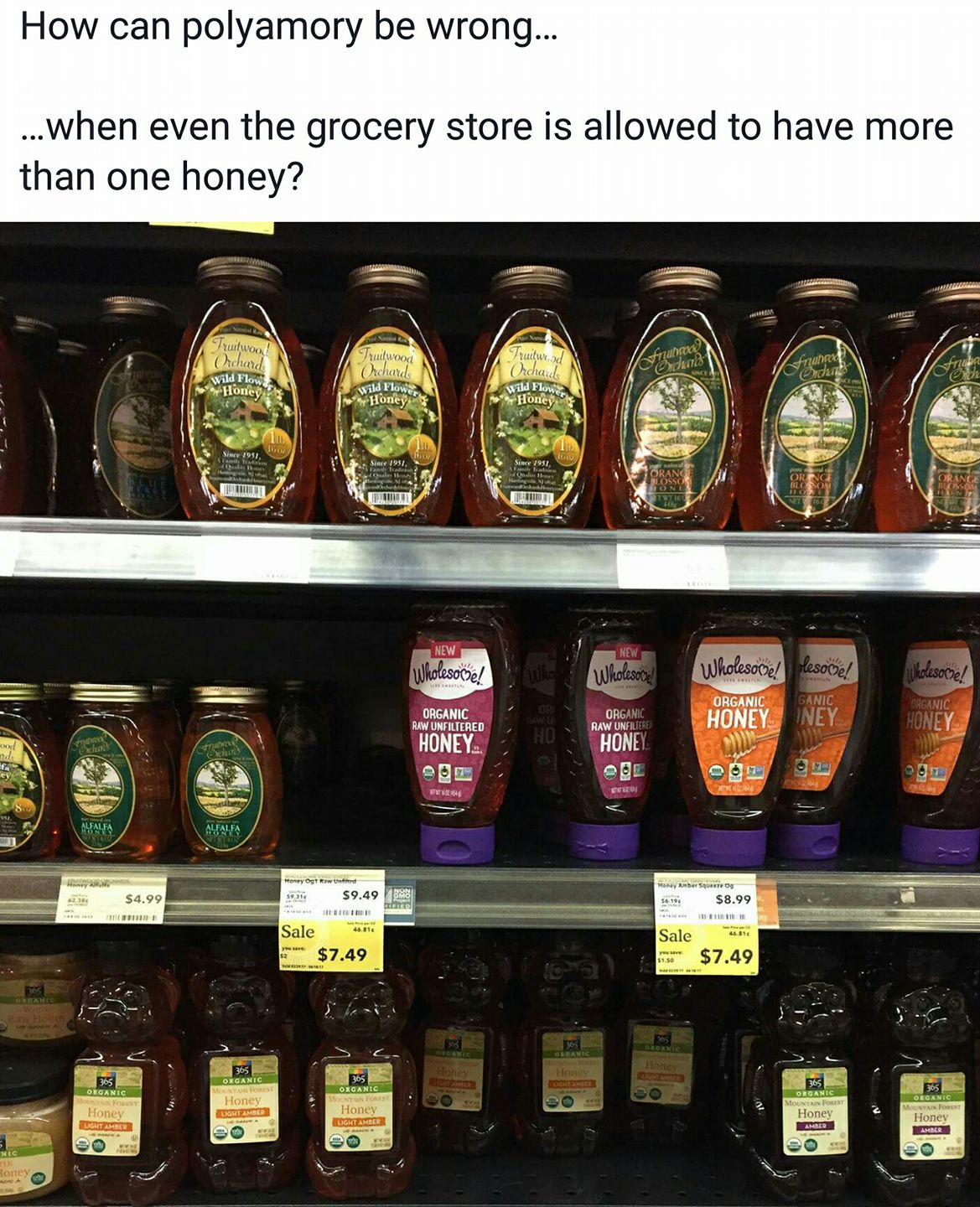 a picture of 3 full shelves of honey at the grocery store (dozens of varieties). Text reads: How can polyamory be wrong... ...when even the grocery store is allowed to have more than one honey?