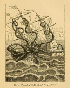 """an illustration of a large squid-like sea monster attacking a masted ship on the sea. At the bottom of the illustration is written the following: """"Fig. 12 -- Facsimile of De Montfort's 'Poulpe colossal.'"""""""