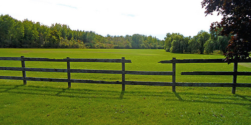 a wooden fence that is broken and missing one of its boards. The fence is on a green pasture. There are trees in the distance