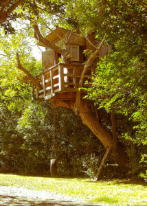a wooden treehouse up in the branches of a tree in a forested area