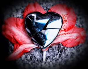 a broken heart-shaped mirror sitting on a red flower on what appears to be pavement