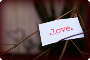 """a white paper note that says """".love."""" on it in red lettering. It is stuck in the branches of a tree"""