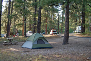 a campsite in the woods