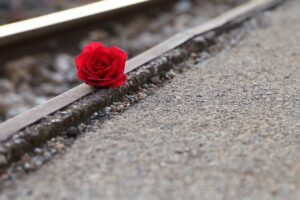 a red rose sitting on a railroad track