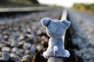 a stuffed animal sitting on the railroad track