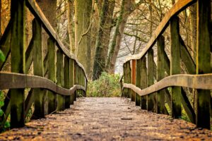 a small wooden bridge over a path in the woods