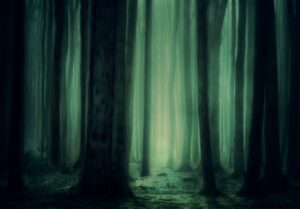 a dark mysterious forest with a green glow in the background